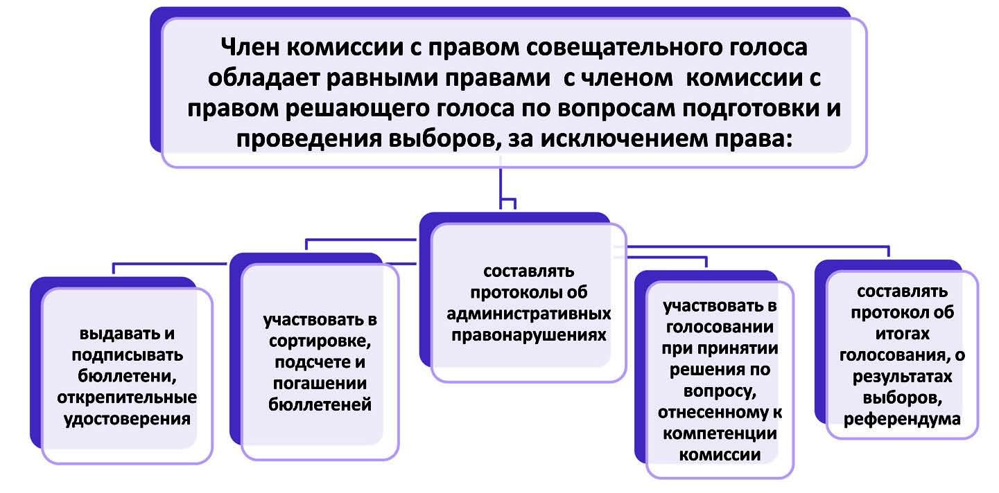 Права и обязанности член избирательной комиссии с совещательным голосом