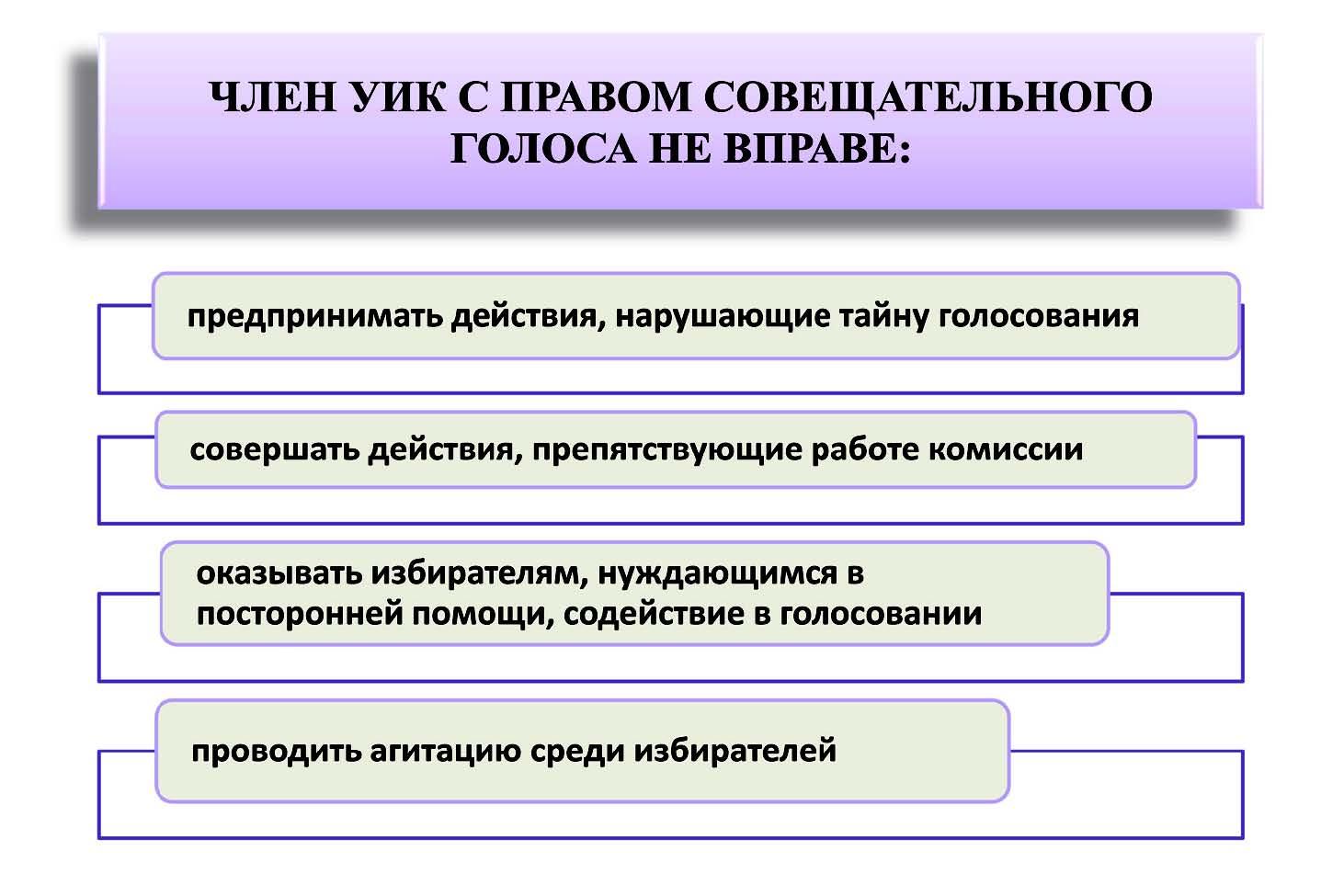 Член участковой избирательной комиссии с правом совещательного голоса обязанности